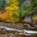 1786 Autumn Colors, Merced River
