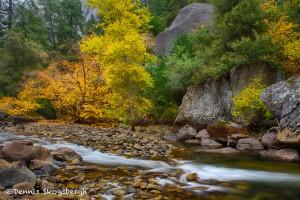 1786 Autumn Colors, Merced River