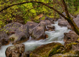 1821 Merced River Downstream from Vernal Falls