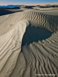 5537 Sand Dunes, Death Valley National Park, CA