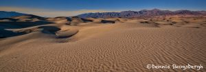 5539 Sand Dunes, Death Valley National Park, CA