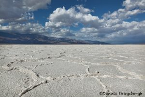 5541 Badwater Salt Pan, Death Valley National Park, CA