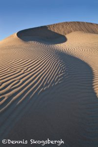 5553 Sand Dunes, Death Valley National Park, CA