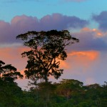 2034 Sunset at Laguna del Lagarto Lodge