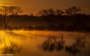 2107 Foggy Sunrise