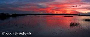 5695 Sunrise, Bosque del Apache NWR, New Mexico