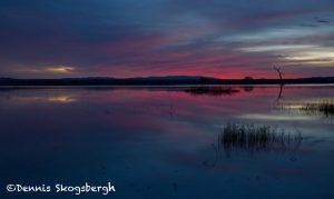 5700 Sunrise, Bosque del Apache NWR, New Mexico
