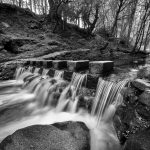 7152 Stepping Stones, Tollymore Forest Park, Northern Ireland
