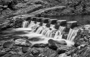 7153 Stepping Stones, Tollymore Forest Park, Northern Ireland