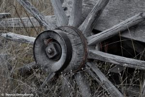 7243 Wagon Wheel, Ashcroft Ghost Town, CO