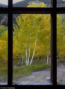 7244 Ashcroft Ghost Town, CO