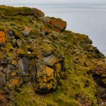7622 Grimsey Island, Iceland