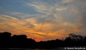8296 Landscape, Pantanal, Brazil
