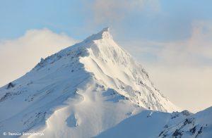 9270 Kenai Mountains, Kenai Mountains, Backdrop of China Poot Bay, Alaska